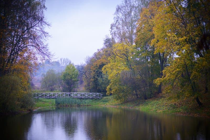 Mooi Bosmeer in de herfst met bezinningswater stock foto