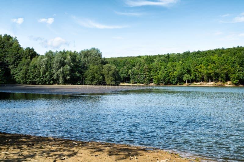 Mooi bosmeer met kristal blauw water met blauwe hemel en wolken, pijnboombomen in Slowakije stock foto's