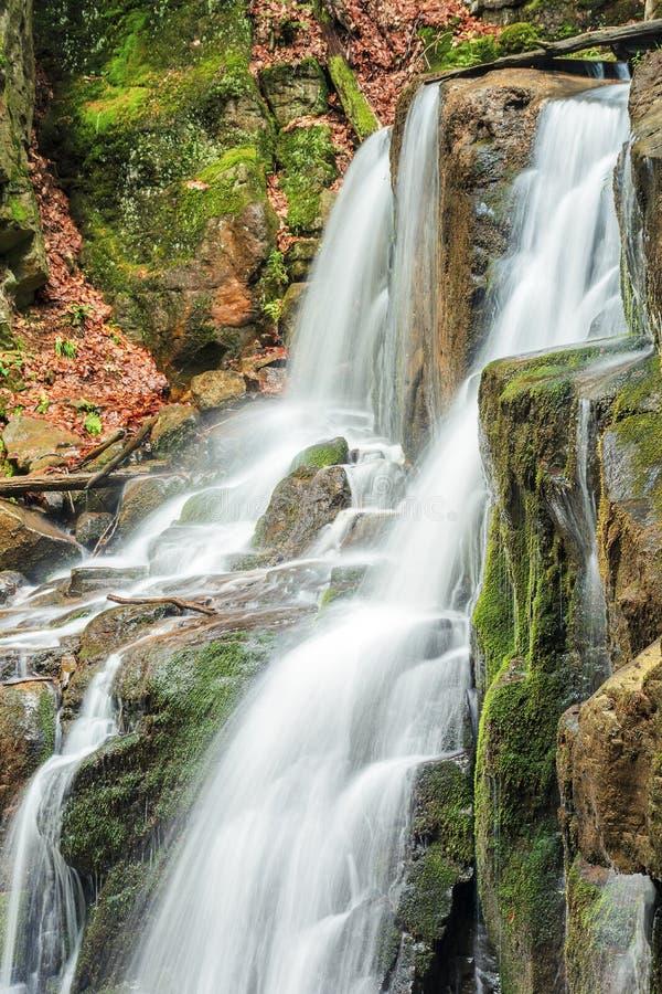 Mooi boswatervallandschap stock afbeeldingen