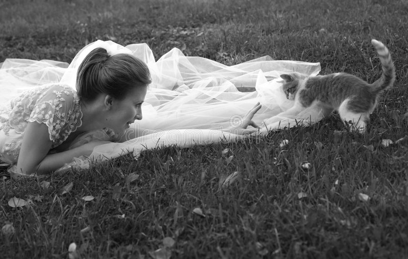Mooi bruid en katje stock foto's