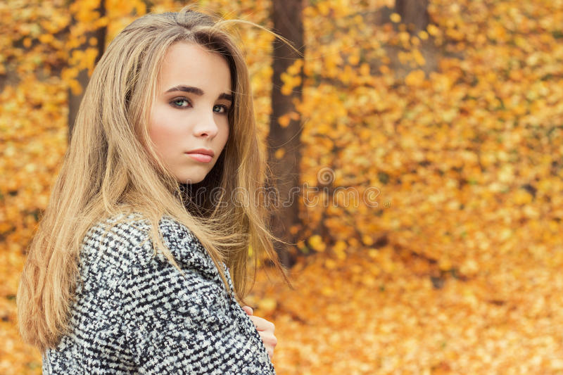 Mooi charmant jong aantrekkelijk meisje met grote blauwe ogen, met lang donker haar in het de herfstbos in laag royalty-vrije stock afbeeldingen