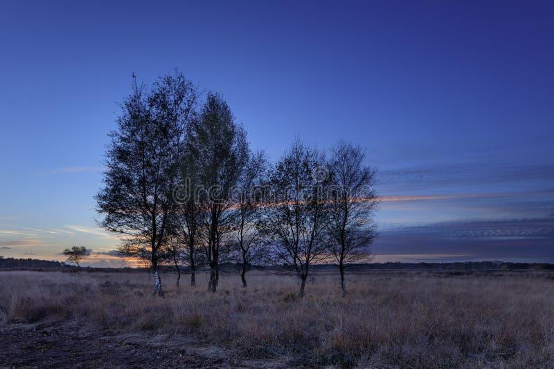 Mooi colcored zonsondergang binnen op een hitteland; De herfst, Nederland royalty-vrije stock foto