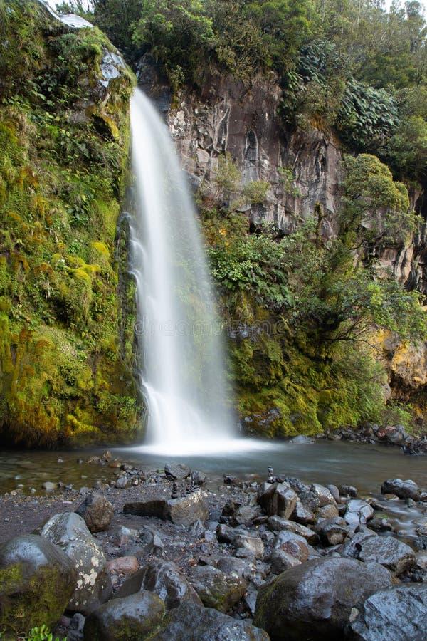 Mooi Dawson Falls in het Nationale Park van Egmont, Nieuw Zeeland royalty-vrije stock afbeeldingen