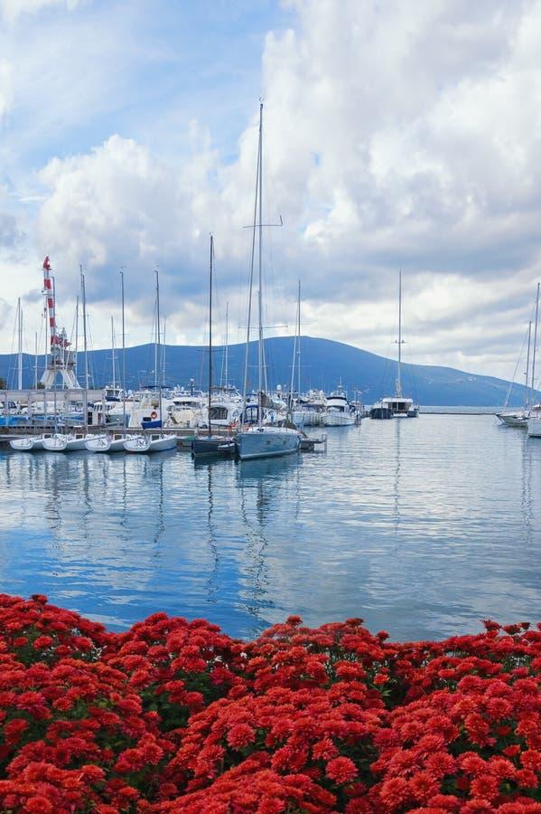 Mooi de herfst Mediterraan landschap Mening van jachtjachthaven van Porto Montenegro Montenegro, Tivat royalty-vrije stock foto's