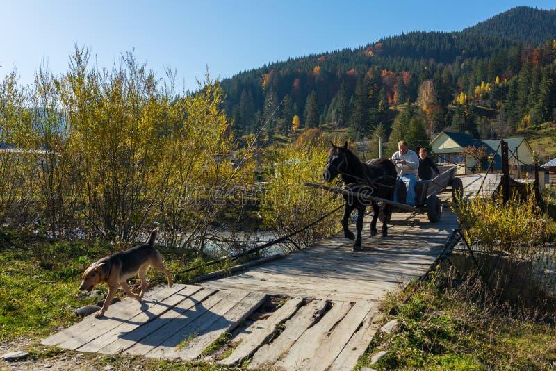 Mooi de herfstlandschap met een paardkar op de houten brug in Karpatische bergen stock foto