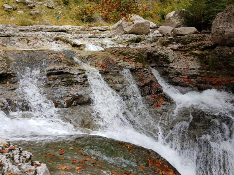 Mooi de herfstlandschap met gevarieerde kleuren van browns, greens, sinaasappelen en geel op de bladeren van de bomen naast de ri stock fotografie