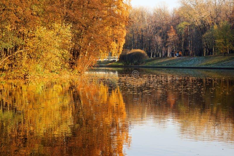 Mooi de herfstpark De herfst in Minsk De bomen en de bladeren van de herfst Autumn Landscape Park in de Herfst Spiegelbezinning v stock afbeelding