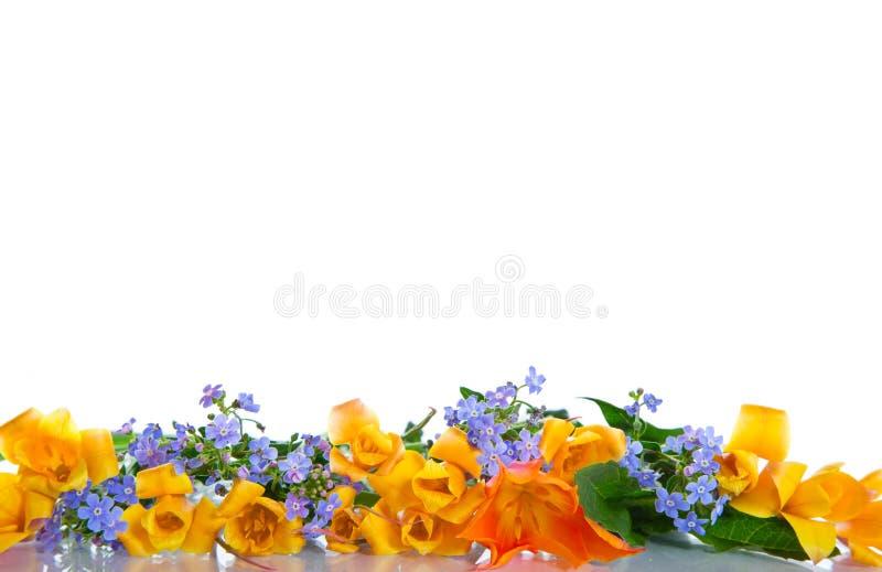 Mooi de lenteboeket van bloemen royalty-vrije stock afbeeldingen