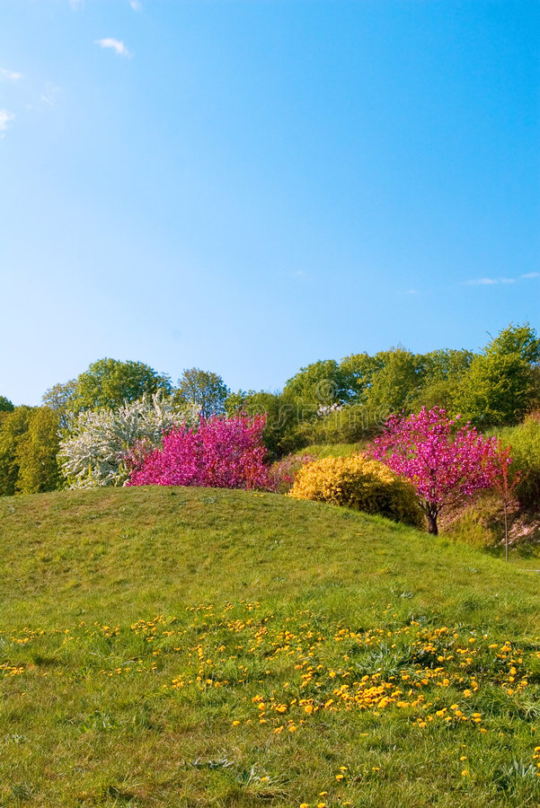 Mooi de lentelandschap royalty-vrije stock afbeeldingen