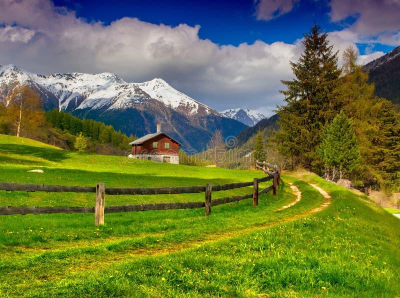 Mooi de lentelandschap in de Zwitserse Alpen stock foto's