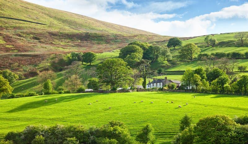 Mooi de lentelandschap in het Nationale Park van het Meerdistrict, Cumbria, Engeland, het UK stock fotografie