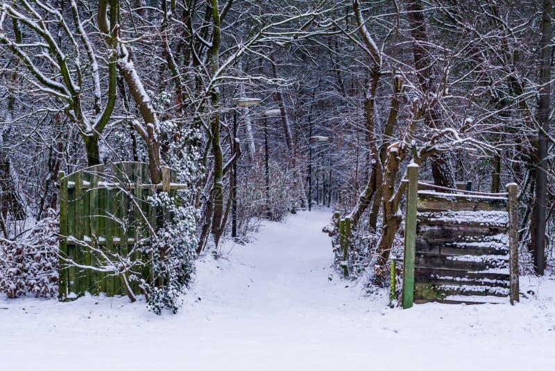Mooi de winter boslandschap met een geopende houten poort, wit sneeuw boslandschap stock foto's
