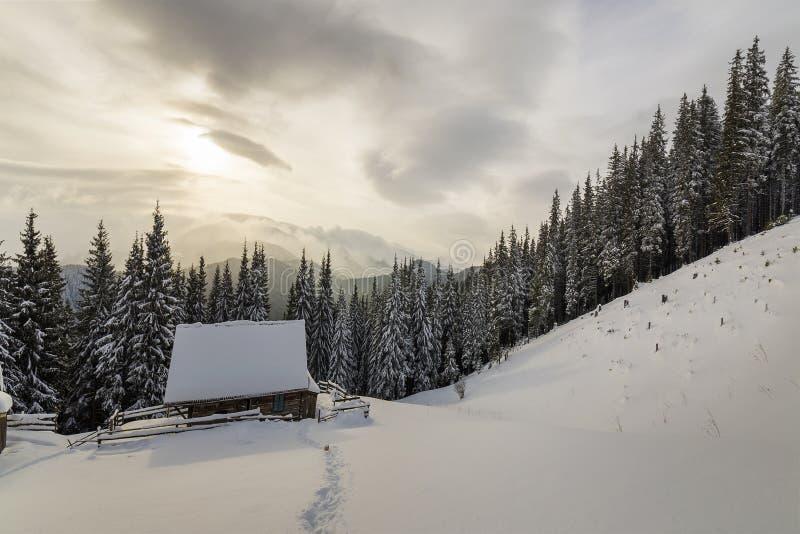 Mooi de winterlandscape Houten herdershut op berg sneeuwopheldering onder pijnboombomen op de bewolkte ruimteachtergrond van het  royalty-vrije stock afbeelding