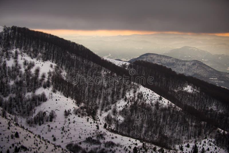 Mooi de winterlandschap met sneeuw behandelde bomen stock foto's