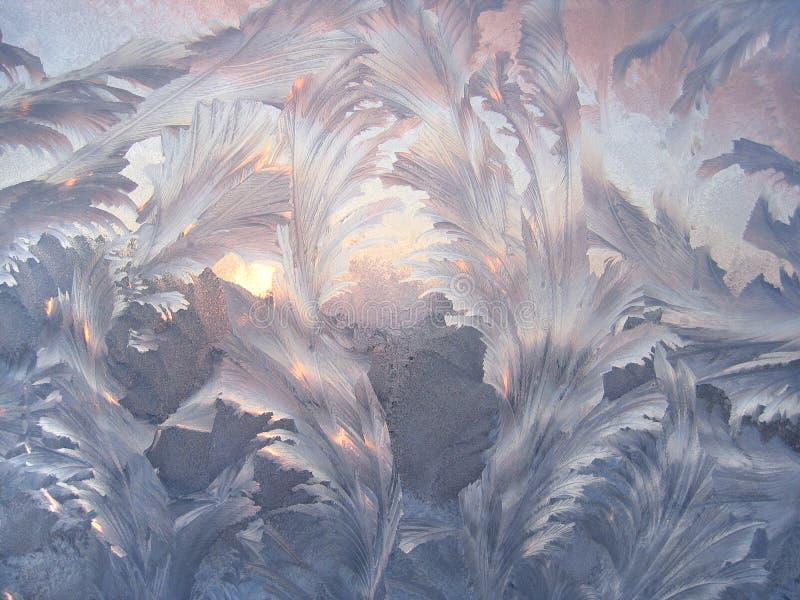 Mooi de winterpatroon stock fotografie