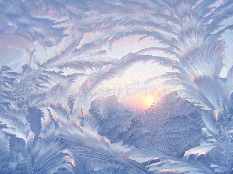 Mooi de winterpatroon stock foto