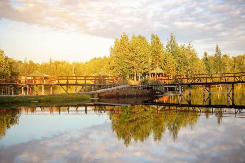 Mooi de zomer zonnig landschap, meermening met bezinning van een blauwe hemel met wolken, bosachtergrond royalty-vrije stock foto