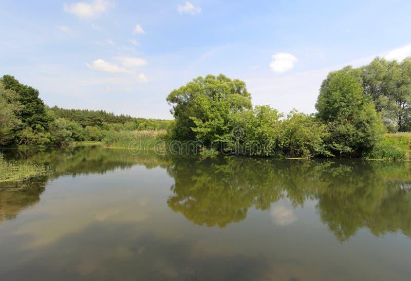 Download Mooi de zomerlandschap stock afbeelding. Afbeelding bestaande uit land - 10781677