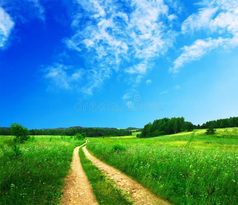 Mooi de zomerlandschap stock afbeeldingen