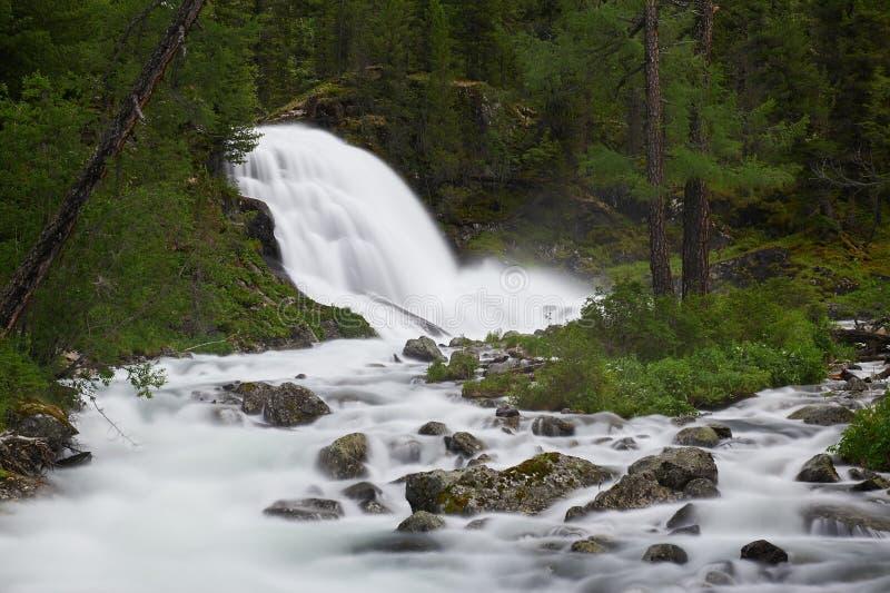 Mooi de zomerlandschap, Altai-bergen Rusland royalty-vrije stock foto's