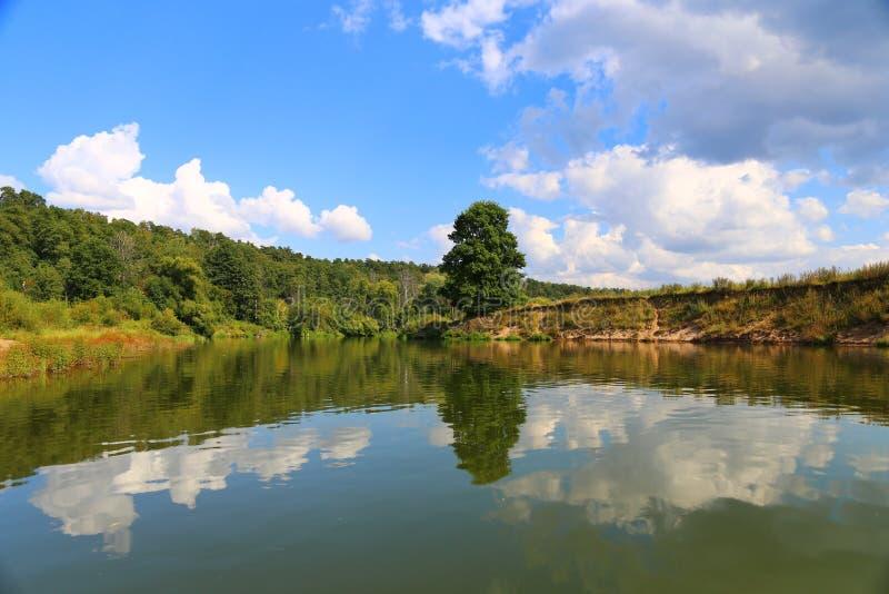 Mooi de zomerlandschap De boom en de blauwe hemel worden weerspiegeld in het water stock afbeeldingen
