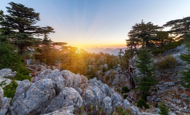 Mooi de zomerlandschap in de bergen District van Kemer, Antalya-Provincie, Turkije royalty-vrije stock afbeeldingen