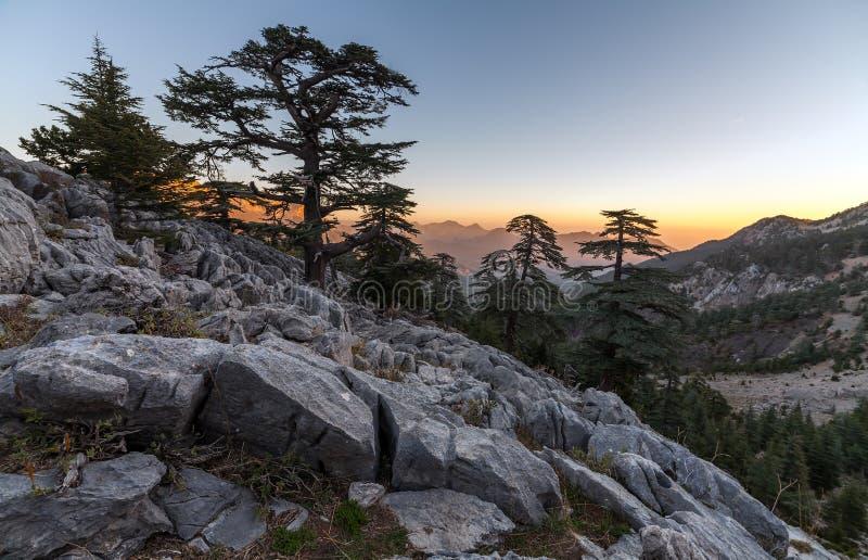 Mooi de zomerlandschap in de bergen District van Kemer, Antalya-Provincie, Turkije royalty-vrije stock afbeelding