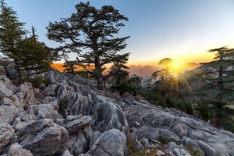 Mooi de zomerlandschap in de bergen District van Kemer, Antalya-Provincie, Turkije stock afbeelding