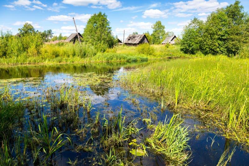 Mooi de zomerlandschap met kleine rustige rivier royalty-vrije stock fotografie
