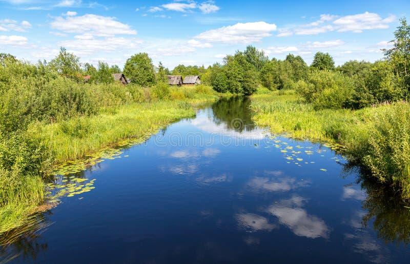 Mooi de zomerlandschap met kleine rustige rivier stock foto