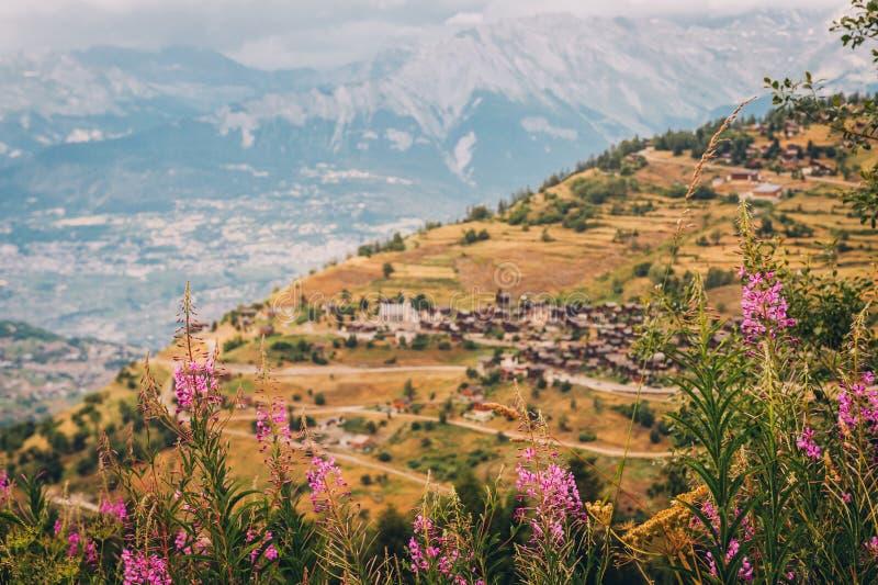 Mooi de zomerlandschap van alpiene bergen royalty-vrije stock foto