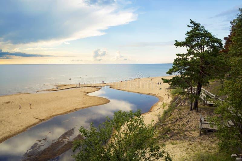 Mooi de zomerlandschap van de Oostzee stock foto's