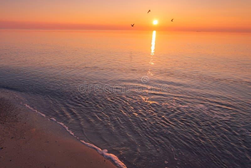 Mooi de zonsopganglandschap van de Zwarte Zee in Odessa royalty-vrije stock afbeelding
