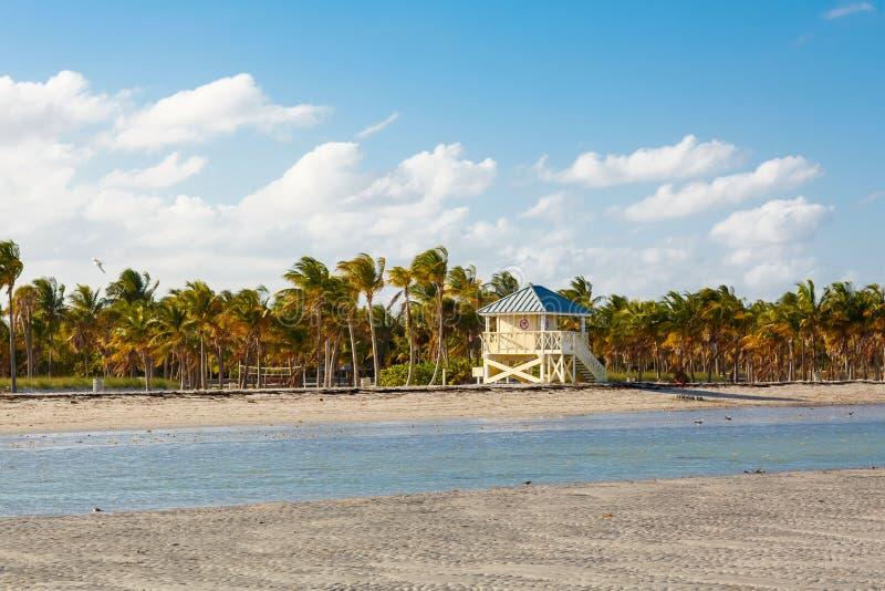 Mooi die Crandon-Parkstrand in Zeer belangrijke Biscayne in Miami, Florida, de V.S. wordt gevestigd Palmen, wit zand en veilighei stock foto's