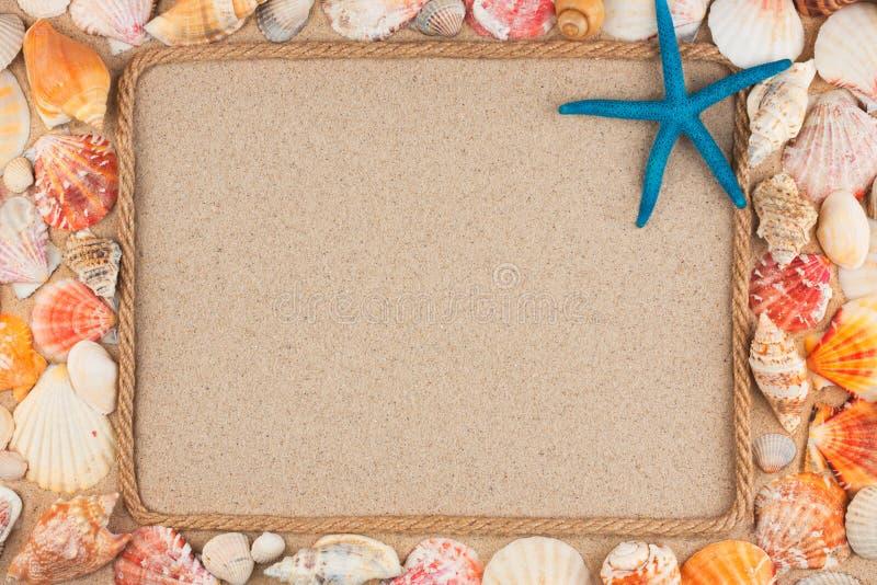 Mooi die kader van kabel en ster, overzeese shells op het zand, met plaats voor uw beeld wordt gemaakt, tekst royalty-vrije stock afbeelding