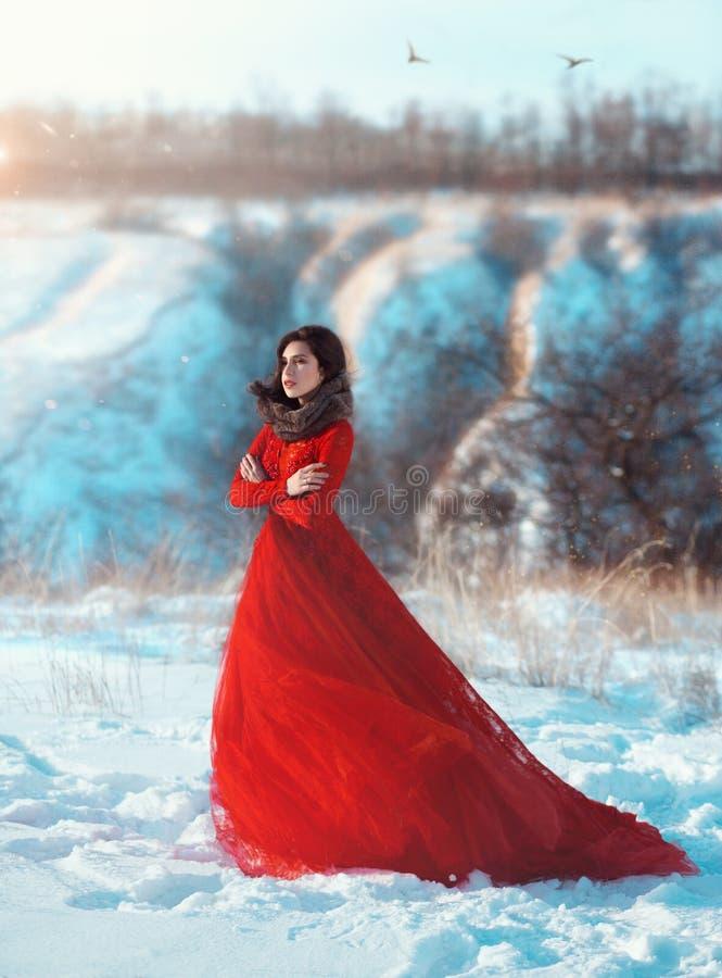 Mooi donkerbruin meisje royalty-vrije stock afbeelding