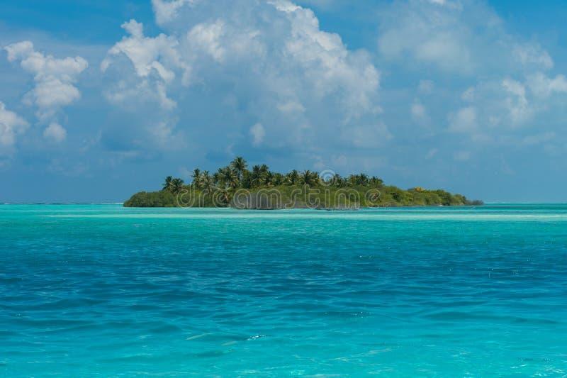 Mooi Eiland met palmen stock afbeeldingen
