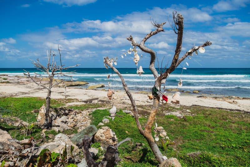 Mooi eiland, strand van Isla Mujeres, Mexico royalty-vrije stock afbeeldingen