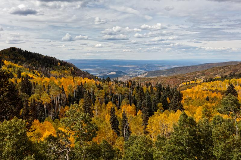 Mooi en Kleurrijk Colorado Rocky Mountain Autumn Scenery royalty-vrije stock afbeelding