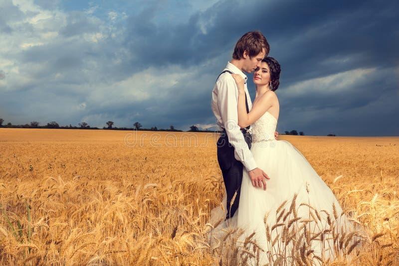 Mooi enkel echtpaar op tarwegebied stock afbeeldingen