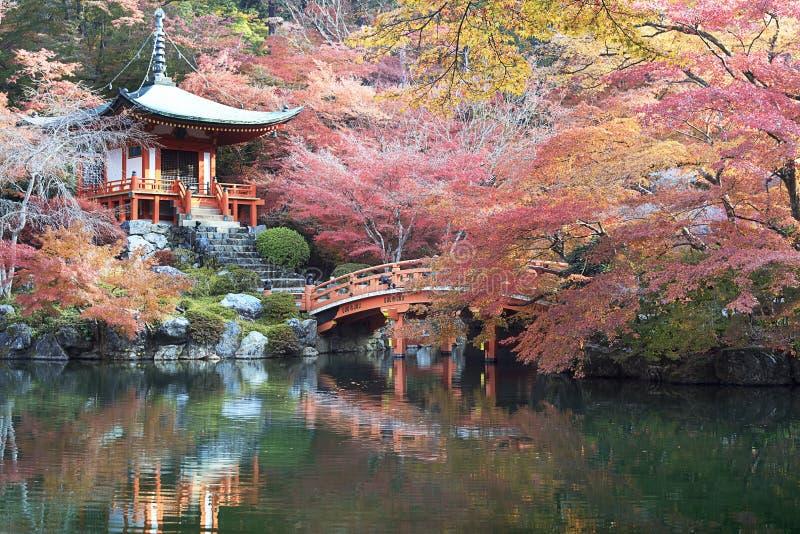 Mooi esdoornseizoen in Japan royalty-vrije stock foto