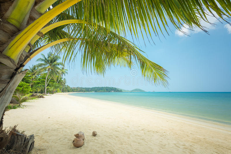 Mooi exotisch strand royalty-vrije stock fotografie
