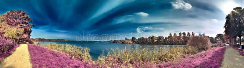 Mooi fantasie infrarood landschap met bomen op een bos en gebieden en veel purpere elementen en een diepe blauwe hemel royalty-vrije stock afbeeldingen
