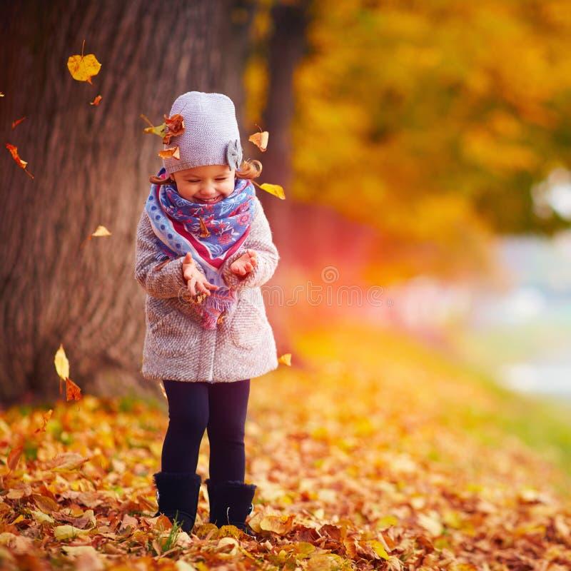 Mooi gelukkig babymeisje die pret in de herfstpark hebben royalty-vrije stock afbeelding