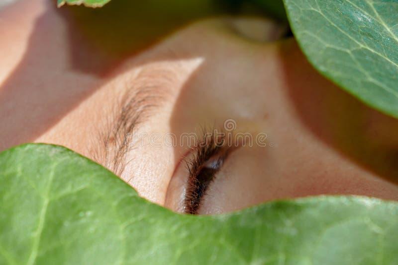 Mooi gezicht dat door de groene bladeren wordt behandeld royalty-vrije stock afbeeldingen