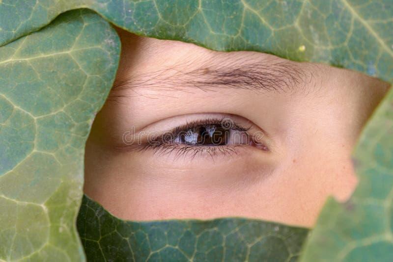 Mooi gezicht dat door de groene bladeren wordt behandeld stock afbeeldingen