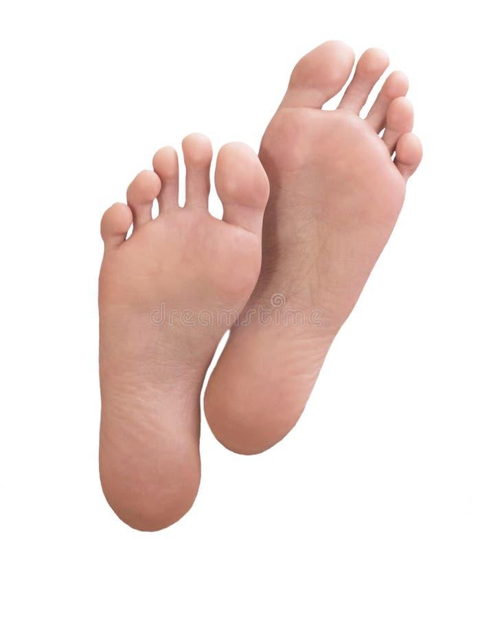 Mooi goed-verzorgd wijfje een voet en een hiel op een wit royalty-vrije stock afbeelding