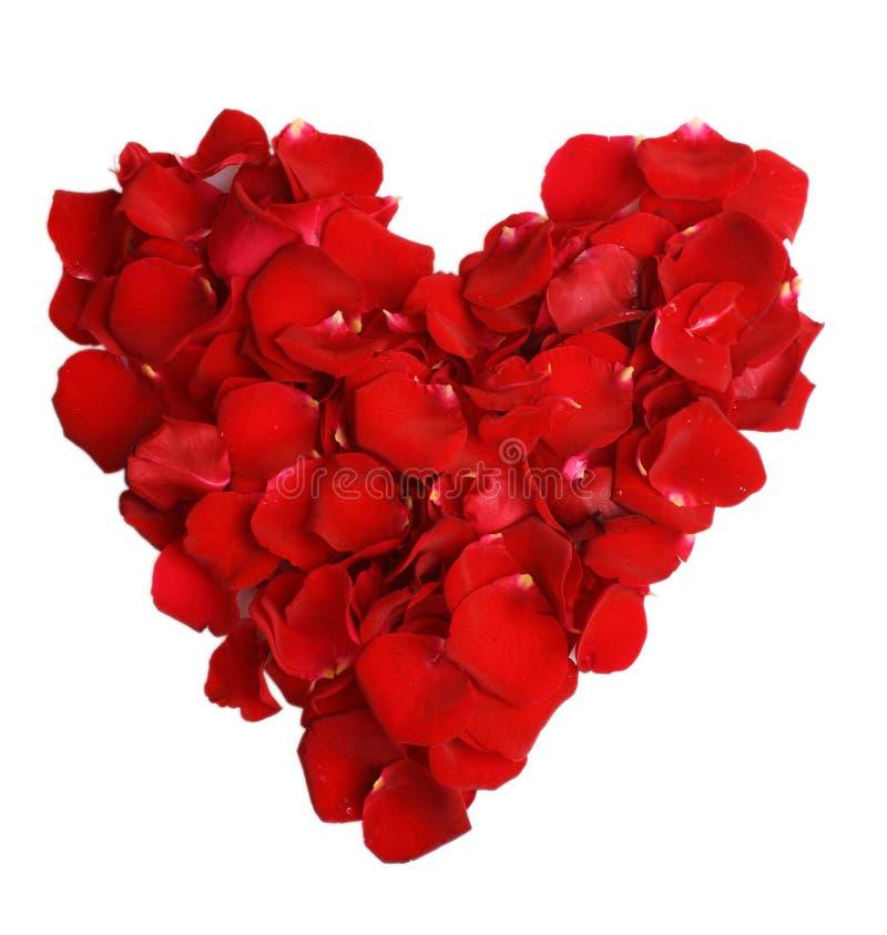 Mooi hart van rode roze bloemblaadjes stock foto's