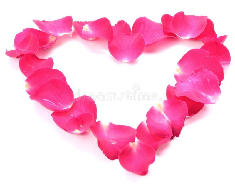 Mooi hart van roze roze die bloemblaadjes op wit worden geïsoleerd royalty-vrije stock afbeeldingen