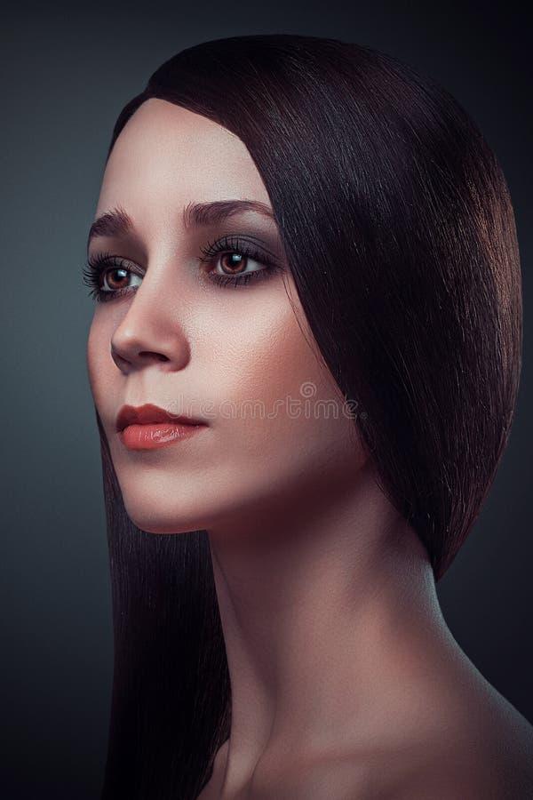 Mooi het Donkerbruine Portret Gezond Lang Haar van de Meisjesglamour stock fotografie